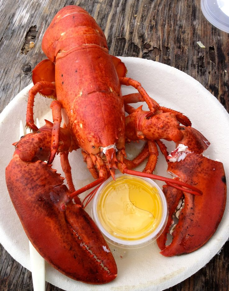 Foodie paradise: 10 great places to eat on Martha's Vineyard
