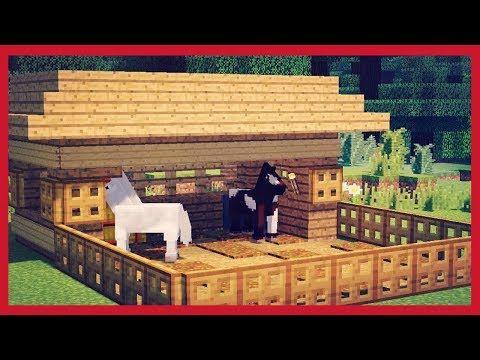 BellaFaccia - YouTube