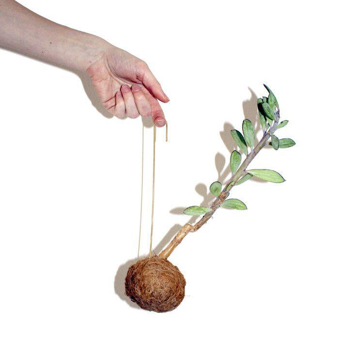 Planteplanet # 2