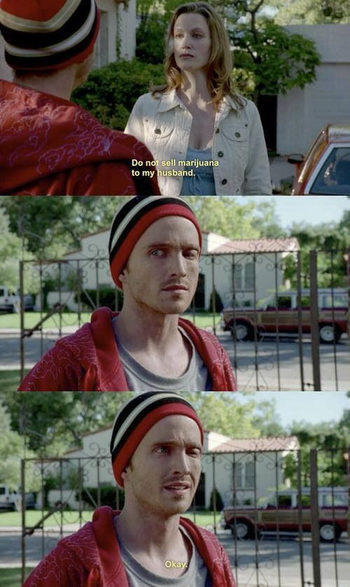 Breaking bad... When Skyler was still clueless ....