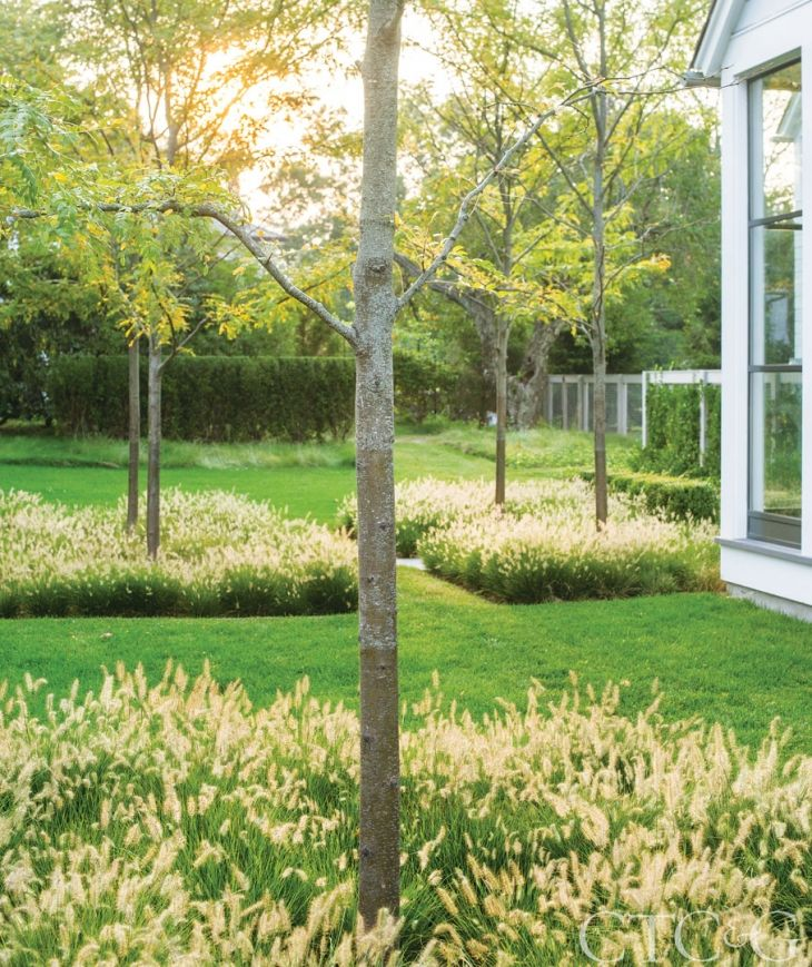 Heavily influenced by Dutch landscape architect Mien Rhys, DHDA envisioned a clean, modern landscape.