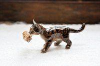 Miniatyyrinen pentua kantava kissa