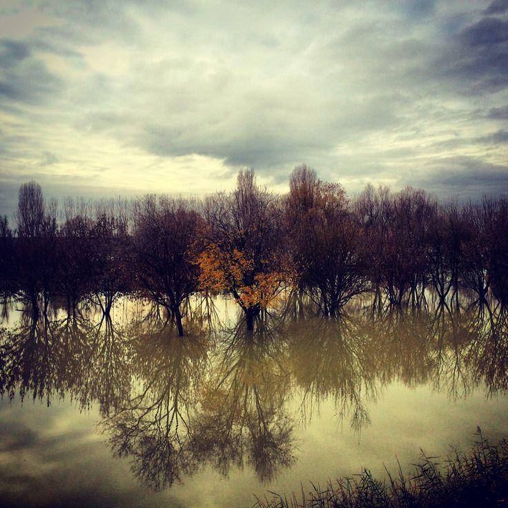 #Ferrara #Occhiobello fiume #Po in piena