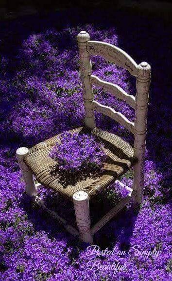 La La Lavender and Purple