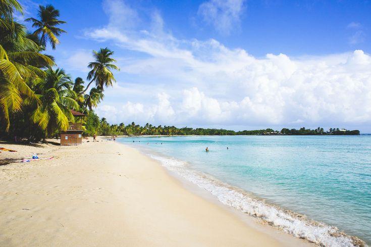Martinique - la plage des Salines