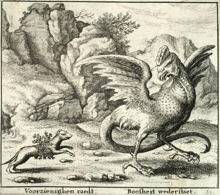 Le Basilic, une bête antique à l'haleine maléfique !   La gravure ci-dessus nous montre une belette combattant un Basilic. Vous remarquerez que ce petit animal très farceur et rusé, s'est entouré le corps d'une plante nommée La Rue. Cette herbe tant redoutée des reptiles, lui permettra de combattre sans crainte le dangereux Basilic au regard pétrifiant, créature mythique mi-coq mi-serpent... zimzimcarillon.canalblog.com   Gravure attribuée à Wenceslas Hollar, 1607/1677.