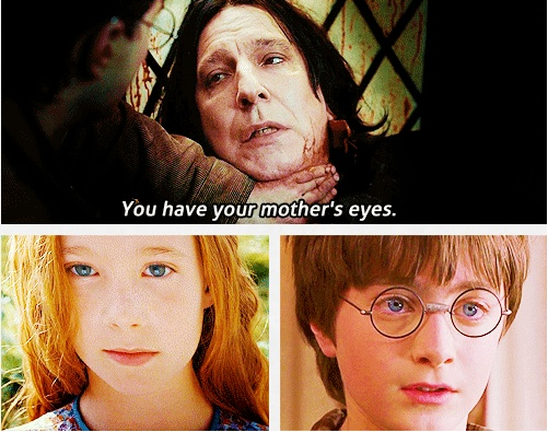 Hogwarts, Potter 4Ever, Potter 4 Ever, Cried My Eyes Out, Mothers Eye, Green Eyes, Hp Scene, Harry Potter, Books Movies People