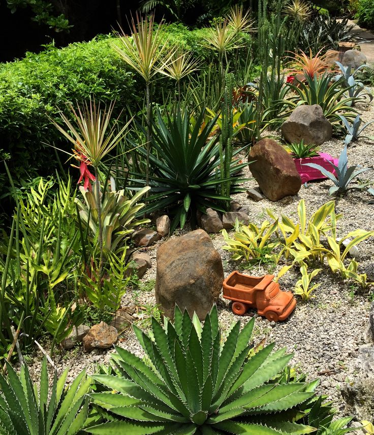 The cactus garden at Orchid World and Tropical Flower Garden