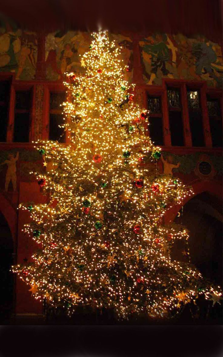 45 Best Christmas Tree Decorations Ideas 2013 Images On