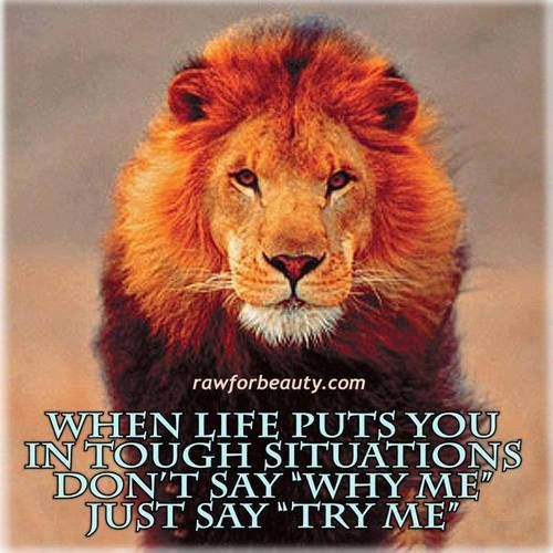 Be strong like a lion! I have faith you can overcome trying obstacles and situations. It will be hard but continue being that  STRONG person i know that you are. It will all turn out good with Jehovah directing you.