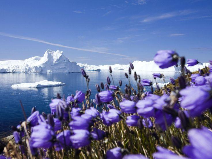 Paisajes naturales con flores, lagos, ríos, playas y montañas. (12 fotos para matar el estrés)   Banco de Imágenes