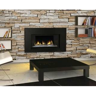 Check Out The Napoleon Gdi 30gn Direct Vent Natural Gas Fireplace Insert With Glass Door And