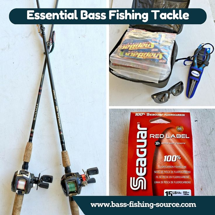 17 best images about bass fishing tips on pinterest bass for Essential fishing gear