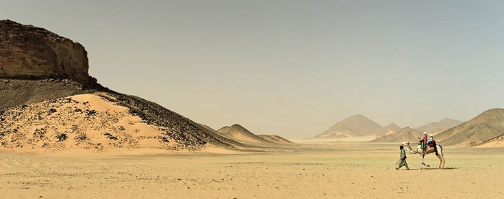 Man of the desert and its beauty