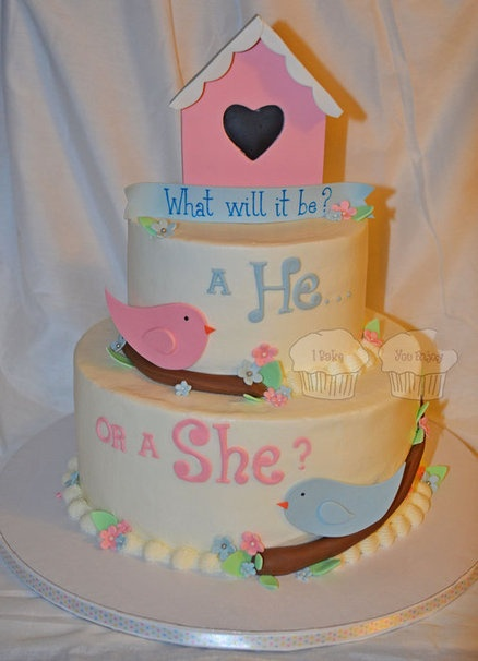 Birdy He or She?  Cake by susieqhomemaker