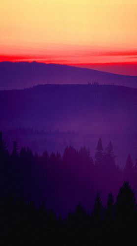 Sunset On The Road to Salem, Oregon | Flickr - Photo Sharing!