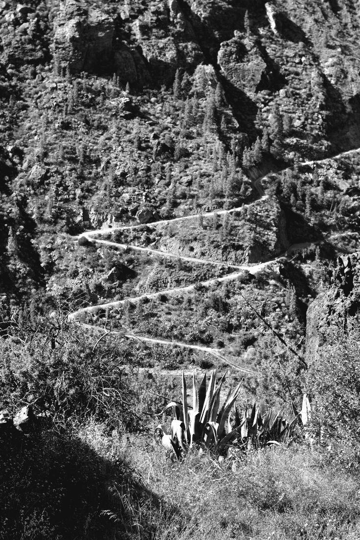 The route. Tejeda