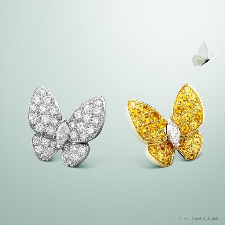 23 best Butterflies images on Pinterest