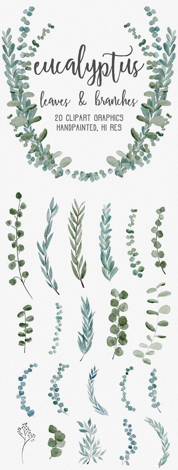 WATERCOLOR EUCALYPTUS GRAPHICS, commercial use, muted watercolor florals, weddin…