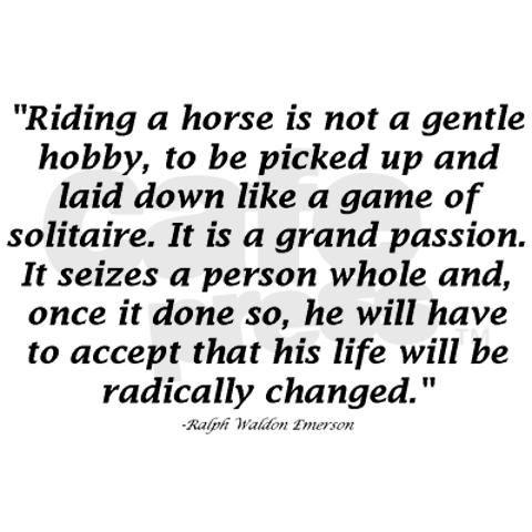 QOTD- horse-riding!
