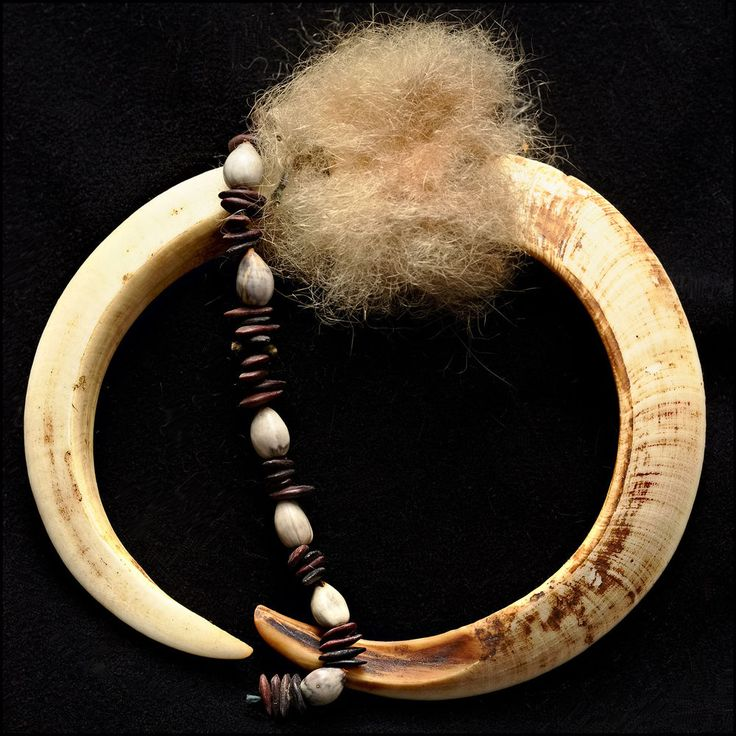 P.N.G.  Maprik Boar Tusk Pendant with fur and seeds - Sepik, Papua New Guinea