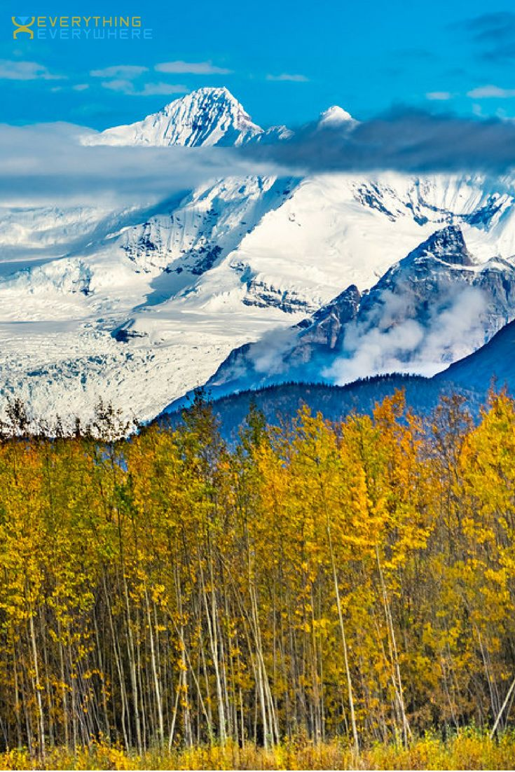 The ultimate guide to Alaska, including tips for visiting national parks such as Denali, Glacier Bay, and Arctic + practical information on airports, safety, and getting around. Travel in the USA. | Everything Everywhere Travel Blog
