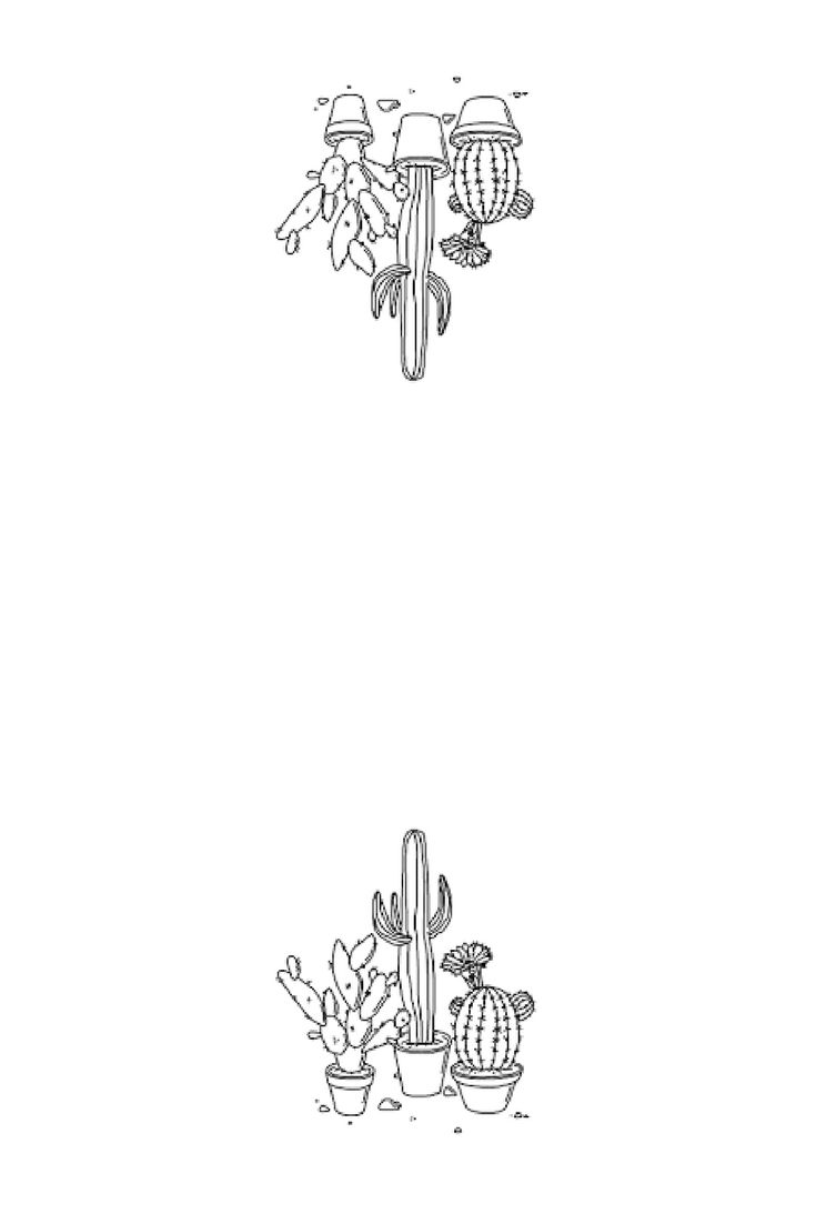Cactus Instagram story template and iPhone background