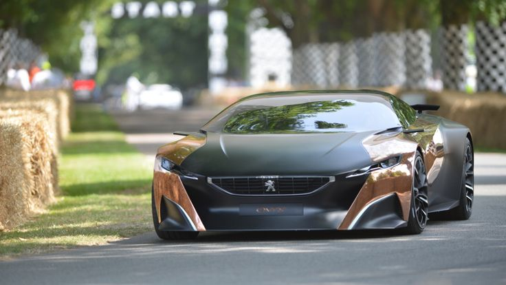 The Goodwood Festival Of Speed  Peugeot Prototype with copper inlays