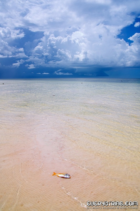 San Felipe, Yucatan, Mexico