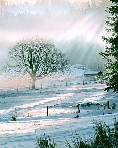 McLennan Valley, by Carol Evans