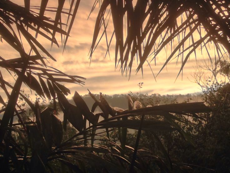 Sunset at worongary