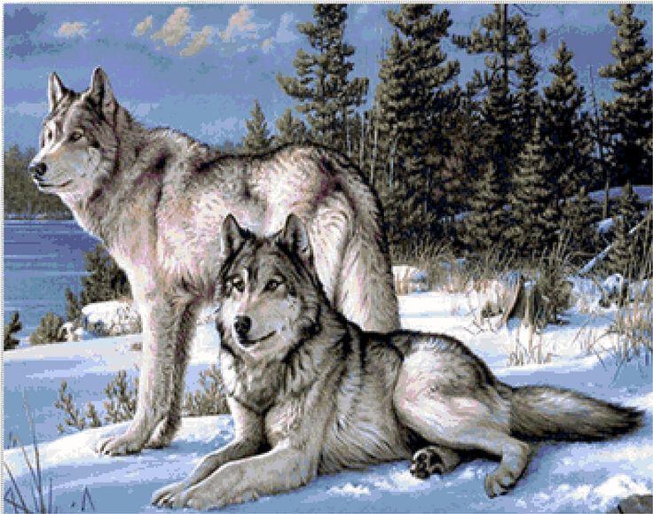 Top Oltre 25 fantastiche idee su Disegni con lupi su Pinterest  CU26