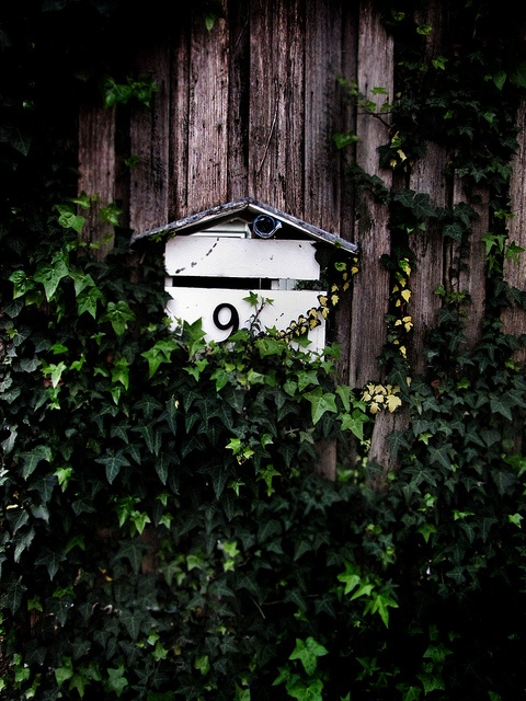 letterbox by Sparrowsalvage, via Flickr
