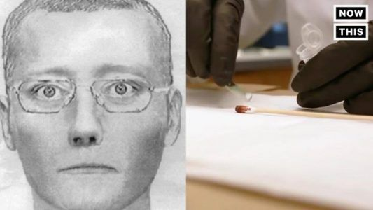 Law enforcement created a sketch of a suspect by using his DNA #news #alternativenews