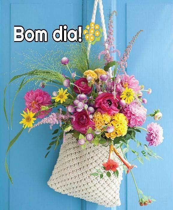 Gratidão pelo presente: a vida.!  _________FranXimenes  Bom dia!!!❤️