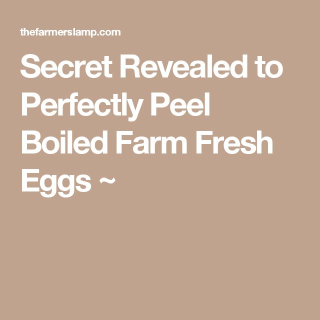 Secret Revealed to Perfectly Peel Boiled Farm Fresh Eggs ~