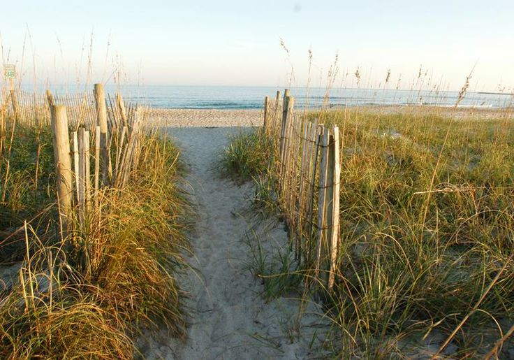 "The Wilmington region is home to three beautiful beaches: Carolina, Kure and Wrightsville. The area also serves as the scenic inspiration for the Nicholas Sparks novels ""Dear John"" and ""Message in a Bottle."""