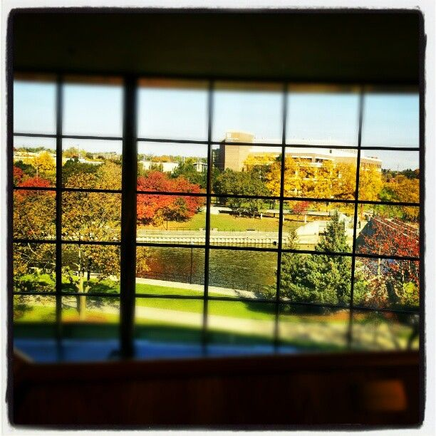 #umflint #university of #michigan #flint #library #thompson #trees #view #colors #autumn #fall #river #window #sky #morning Photo by jpdd91