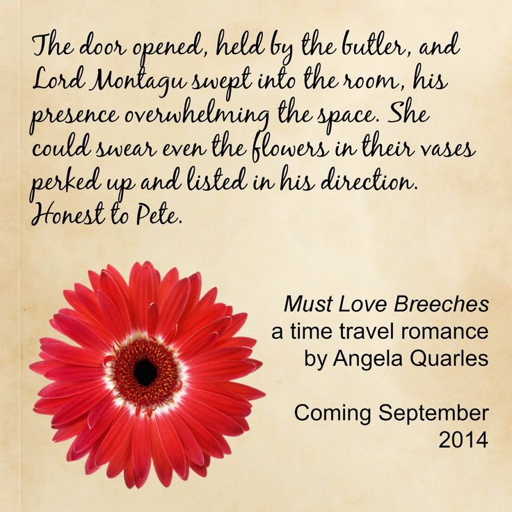 Quote from Must Love Breeches, a time travel romance coming September 2014, by Angela Quarles
