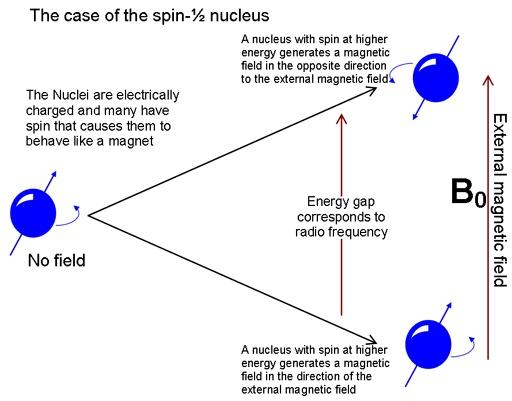 BASIC CHEMISTRY - abctlc.com