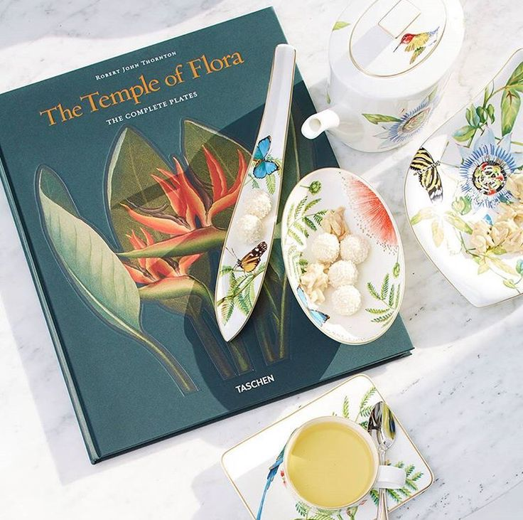 #Amazonia is like a voyage to the true beauty of nature Each piece carries an exotic decor pattern inspired by the work of @AlexandervonHumboldt Enjoy it as a fine porcelain #dinnerware or offer it as  #gift #villeroyandboch