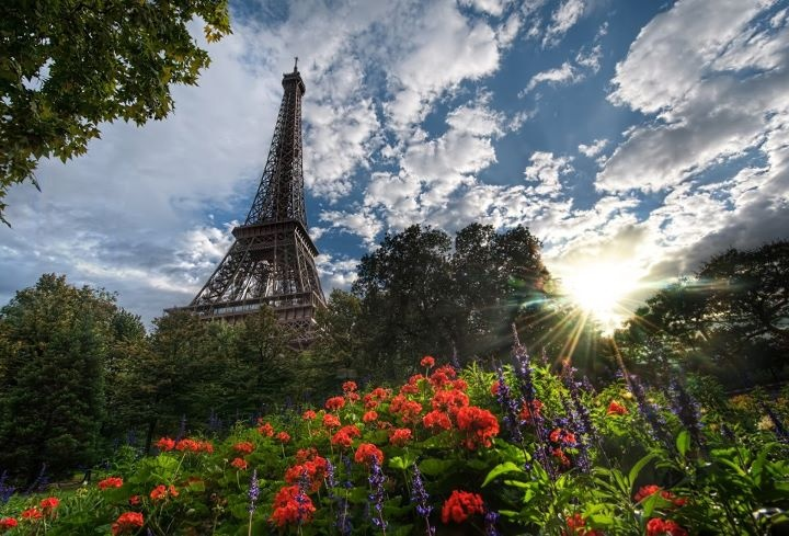 PariPhotos, Photography Portfolio, Trey Ratcliff, Summer Day, Eiffel Towers, Colors, Paris France, Places, Flower