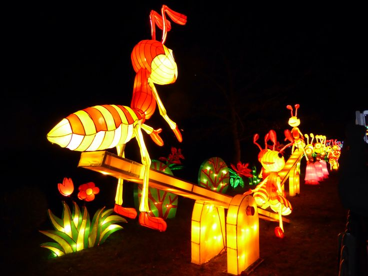 Ant Lanterns at Chiswick House Lantern Festival in 2016