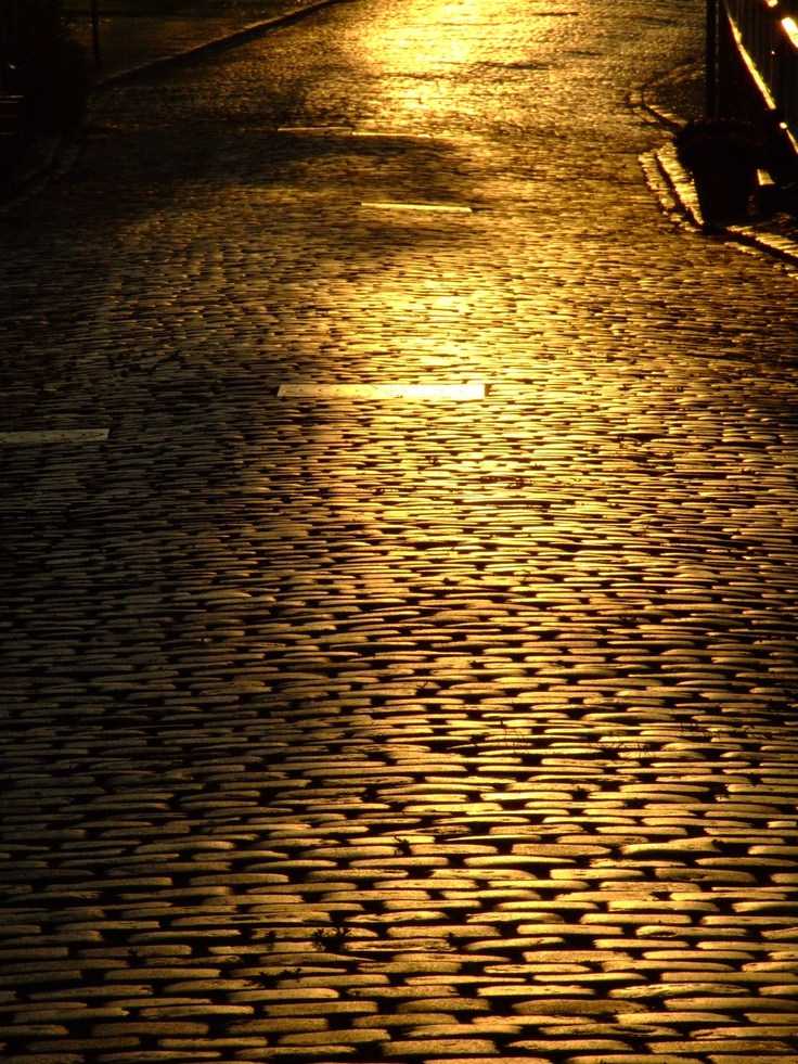 Morning glory on the cobblestones of my street...looks like gold! Ærøskøbing: the cobbles are hundred of years old! Still going strong and ecofriendly too. Photo by Naja Abelsen