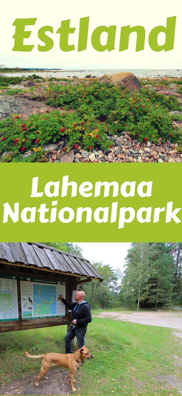 Der Lahemaa Nationalpark in Estland ist auf jeden Fall eine Reise wert. Dort kommt man auch an den nördlichsten Punkt Estlands und hat tolle Möglichkeiten, dort zu wandern und spazieren zu gehen. Estland ist allemal einen Besuch wert.