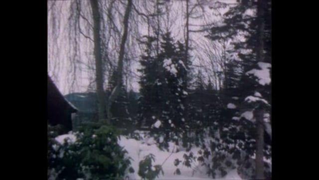 Winter in Oberbärenburg on Vimeo