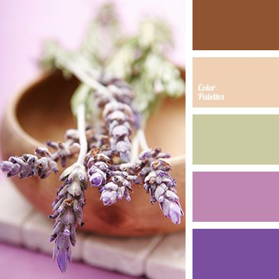 color of lavender, color of wood, color solution, gray-green, lilac, olive-green, pale brown, red-brown, selection of color, selection of color solution for home, shades of brown, shades of lavender, Violet Color Palettes.