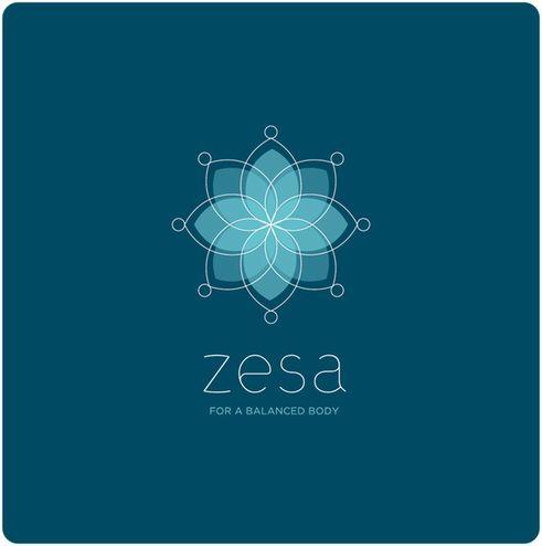 zesa Branding