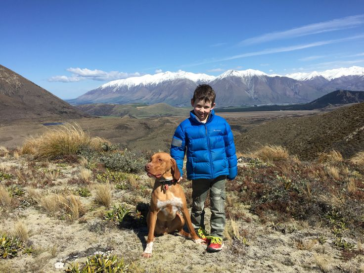 West of Lyndon Road – Wilderness Kiwis
