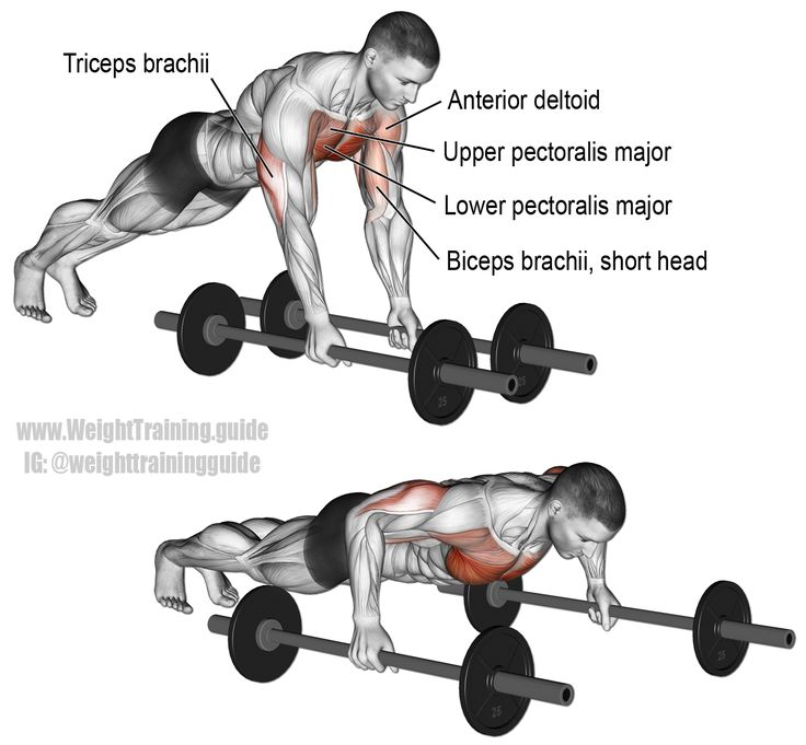 17 Best Images About Isolation Exercises On Pinterest: 17 Best Images About Chest Exercises On Pinterest